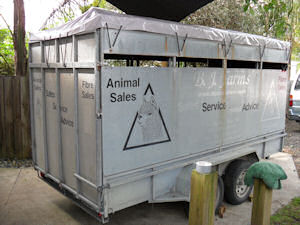 alpaca trailer with pvc  cap
